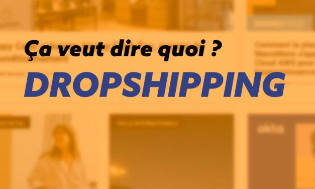 Guide ultime, tout savoir sur le dropshipping !